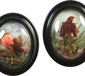 A pair of Victorian taxidermy framed exo